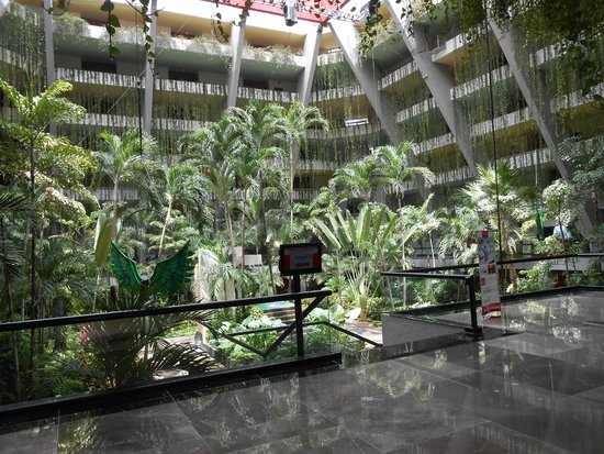 Grand Oasis Cancun: Courtyard in Grand Oasis