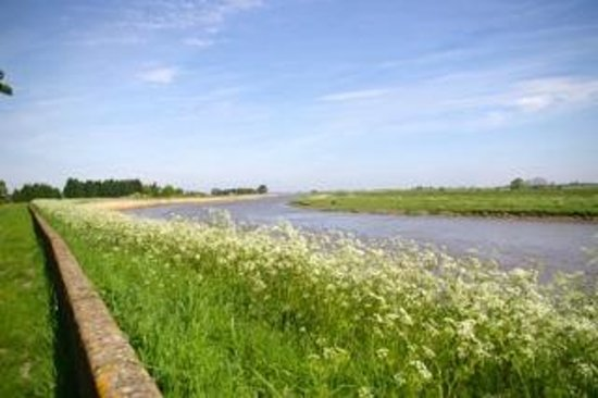 The Abbey Bed and Breakfast: The River Ouse - from the Chinese Room