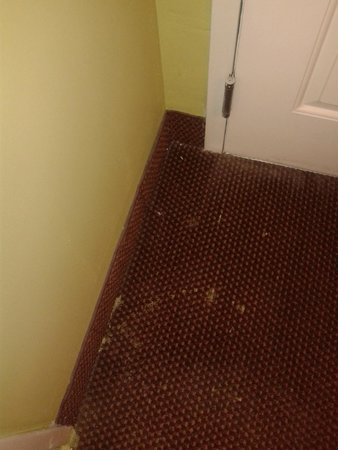 Quality Inn : The carpet was very dirty