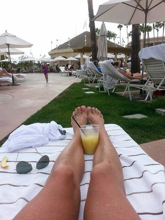 Loews Coronado Bay Resort: drink of a day - Orange Dream - YUM!