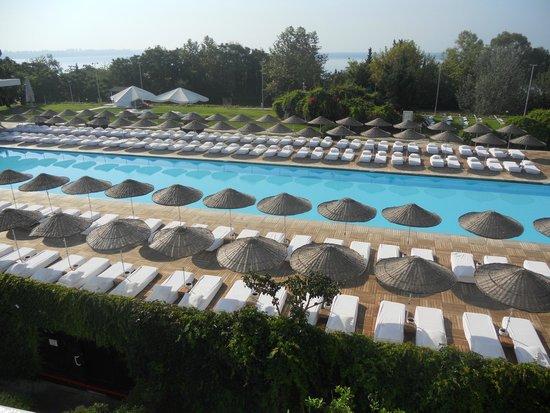Hotel SU : piscina