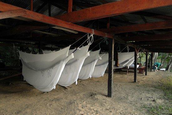 Kabalebo Nature Resort: Bivak Camp