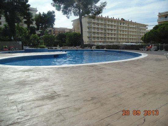 Hotel Best Mediterraneo : бассейн1