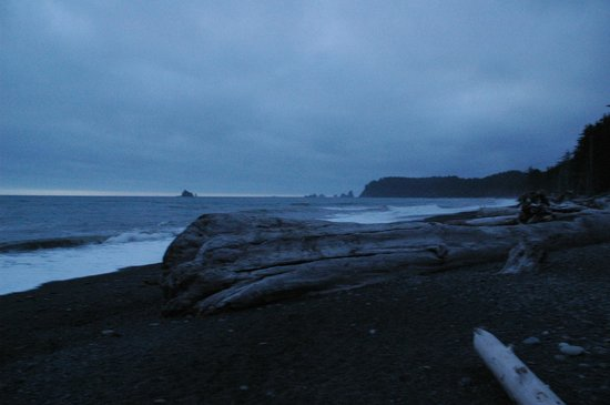 Manitou Lodge Bed and Breakfast: Rialto Beach...of Twilight fame