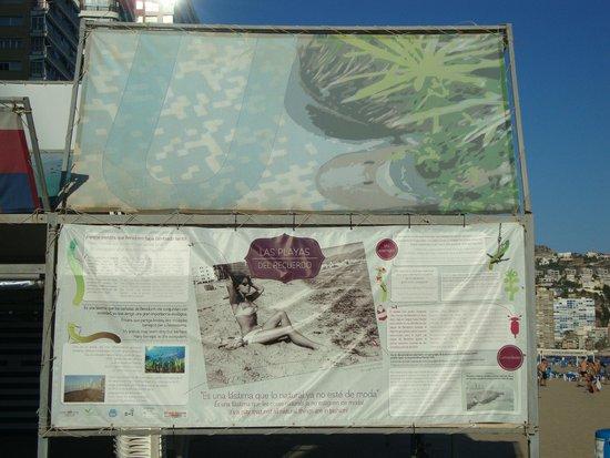 Playa de Levante: 9