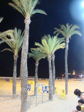 Playa de Levante: 6