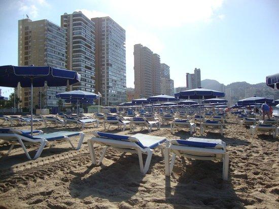 Playa de Levante: 4