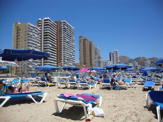 Playa de Levante: 8