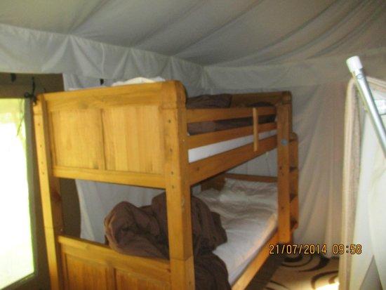 Bear Lodge: bunks