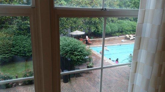 Westfields Marriott Washington Dulles: Pool view