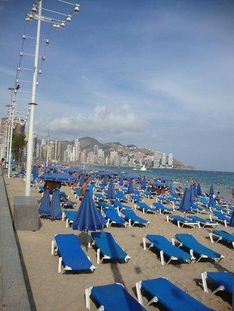 Playa de Levante: 13