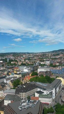 Radisson Blu Plaza Hotel, Oslo: View from 3202