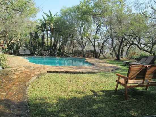Shayamoya Tiger Fishing & Game Lodge: Pool grounds