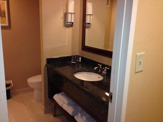 Crystal Gateway Marriott: Nice size bathroom!