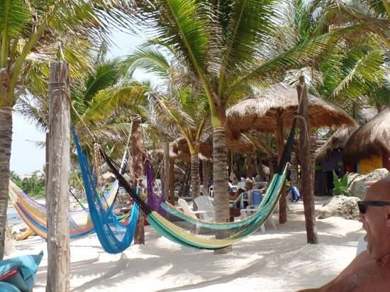 La Buena Vida Restaurant: hammocks