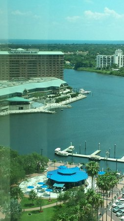 Embassy Suites by Hilton Tampa - Downtown Convention Center: Enjoyed watching rowers and electric boats