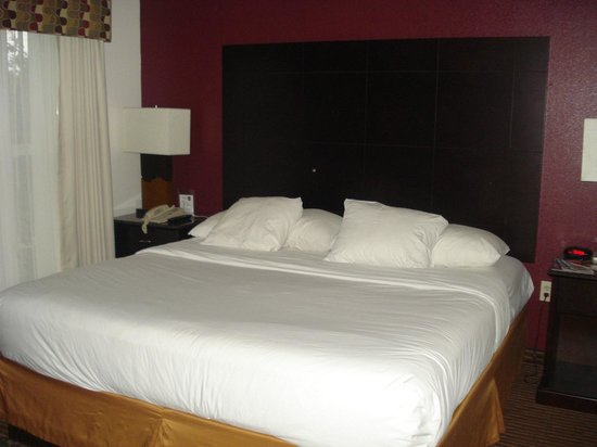 Quality Suites Lake Buena Vista: cama casal