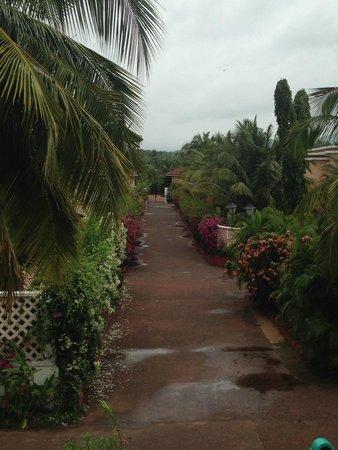 The LaLiT Golf & Spa Resort Goa: Garden