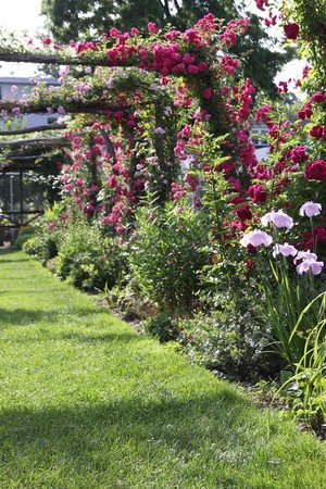 Smith College Botanic Garden : Capen Garden