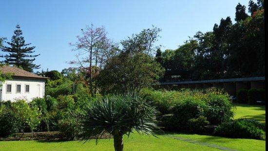 Quinta da Casa Branca: Aussicht Garten