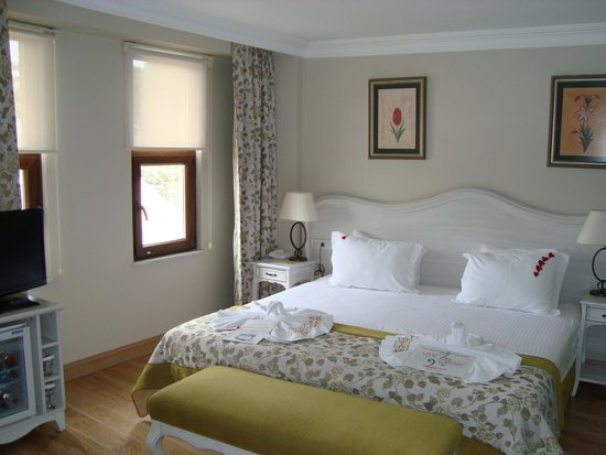 Arena Hotel: room