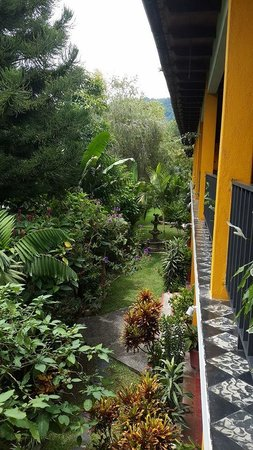 Hotel Cacique Inn: View from second floor