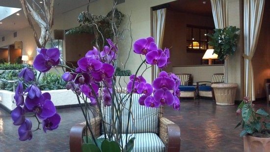Portola Hotel & Spa at Monterey Bay: Lobby:  lovely area to sit and relax