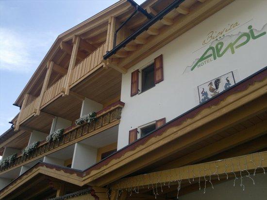 Biovita Hotel Alpi: la facciata principale