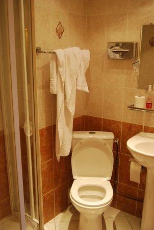 Minerve Hotel : WC