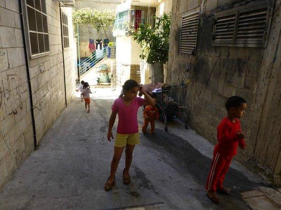 Green Olive Tours : refugee camp AIDA