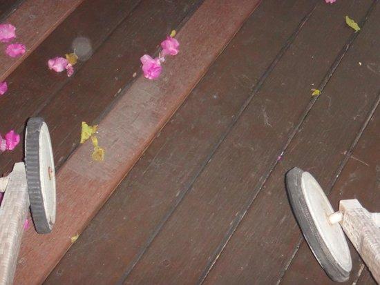 Le Jardin Villas: Leider defekte Liegen am Pool