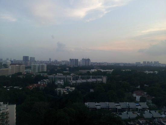 Shangri-La Hotel, Singapore : View from Terrace Garden