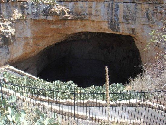 Carlsbad Caverns Natural Entrance Tour : Natural Entrance w/ 1.25mi winding descent.