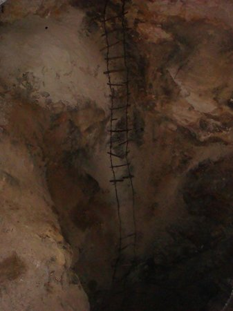 Carlsbad Caverns Natural Entrance Tour : Old ladder used for early exploration.