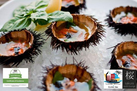 Uno Con Carne : Sea urchins