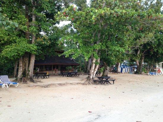 Sunset at the Palms: beach bar
