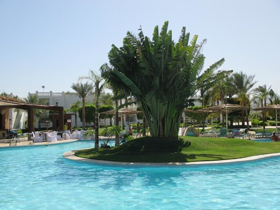 Sonesta Club : Pool and hotel