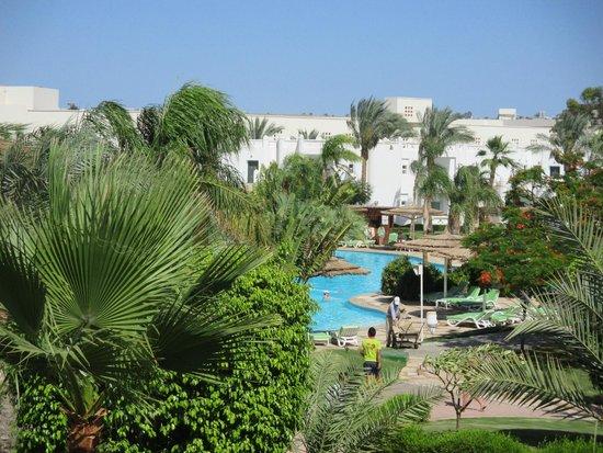 Sonesta Club : Pool view from balcony