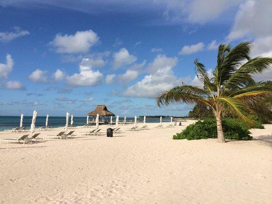 The Westin Puntacana Resort & Club: Early morning beach