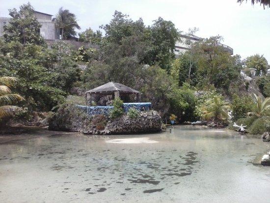 Hotel El Espanol Paseo de Montejo: Mahogany Beach