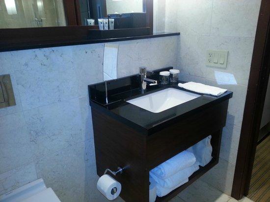 Millennium Knickerbocker Hotel Chicago: Updated finishes in the bathroom