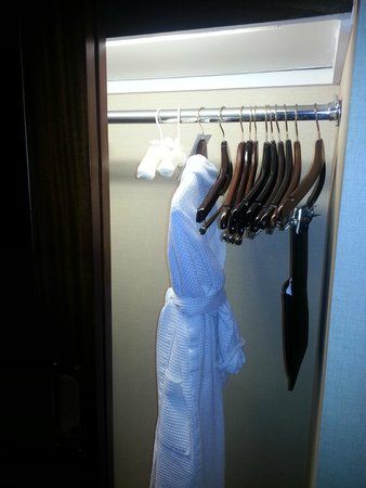 Millennium Knickerbocker Hotel Chicago: Roomy Closet