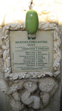 Olive Tree Hotel : Weather forcasting in Jerusalem