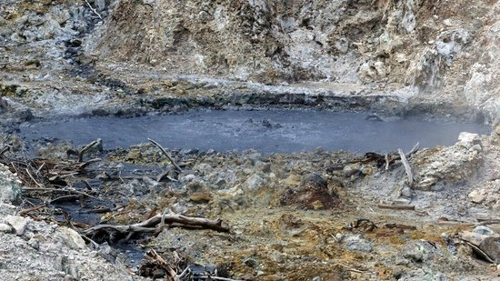 Sulphur Springs: Bubbling mud