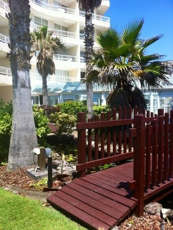 19th Avenue on the Beach: Lovely gardens and enclosed pool
