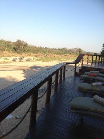 Jock Safari Lodge : Lounge area - notice the elephant family