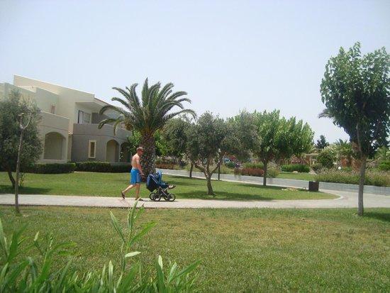 Kipriotis Village Resort: Vue de la chambre 606