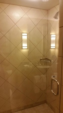Emory Conference Center Hotel : Shower