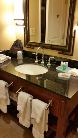 Emory Conference Center Hotel : Bathroom