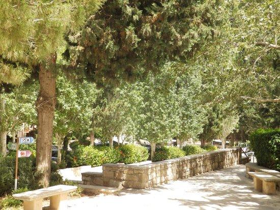 Monastère Ayios Neophytos : Монастырь преподобного Неофита Затворника